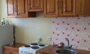 Сдается однокомнатная квартира в новом доме на Максима Горького