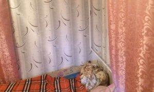 """Сдается двухкомнатная квартира рядом с ТРЦ """"Иремель"""""""