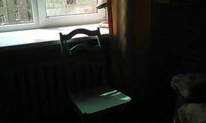 Сдается комната в Черниковке