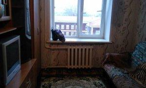 Сдается комната в малосемейке по улице Дмитрия Донского